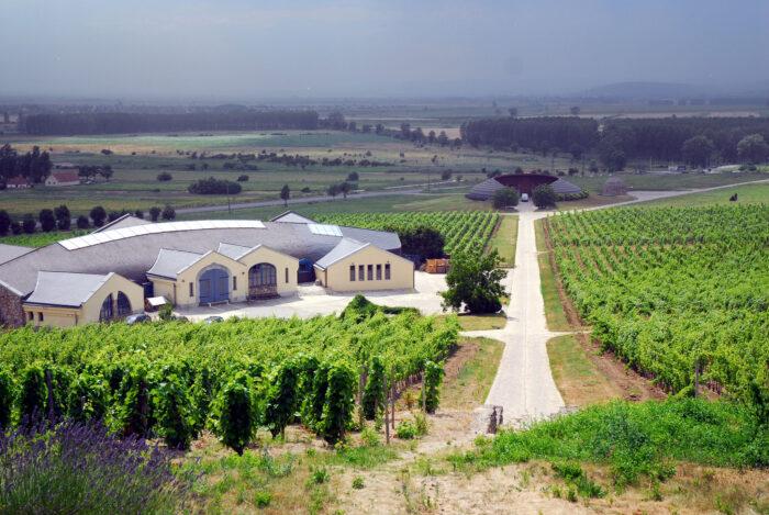 Виноробний регіон Токай
